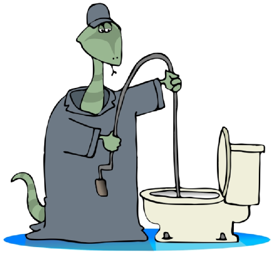 Toilet Snake