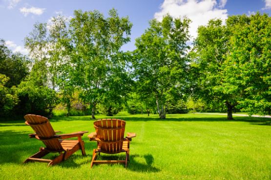Summer relaxing