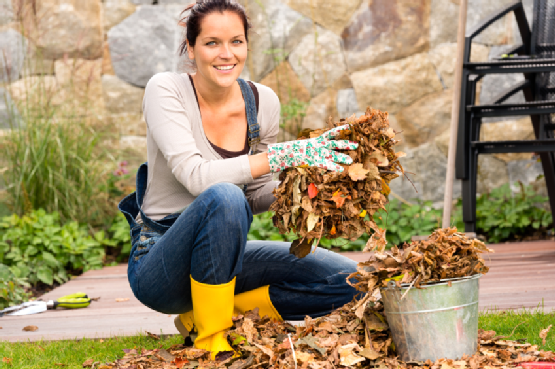 Caring for Your Lawn During the Fall Season - A Tool Shed